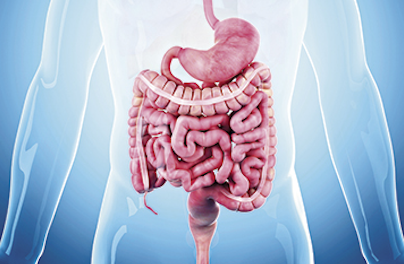 digestive tract cancers